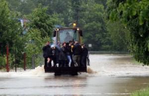 laktasi poplava