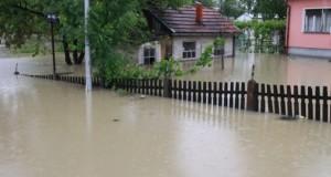 laktasi poplave 1