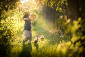 tablet_baby-boy-with-ducks-wallpaper