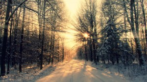 wallpaper-winter-sun-healing-background-image