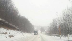 cesta zimi