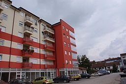 256px-Laktasi_September_2008