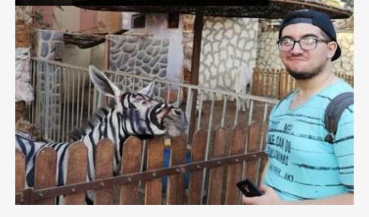 Nešto je jaaaako čudno ovde: ZOO tvrdi da su ovo – zebre