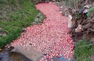 rijeka-jabuka
