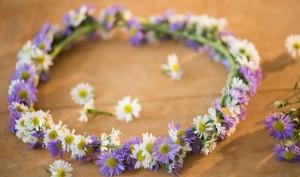 cvijece-222