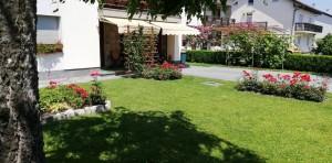 dvorište2