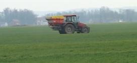 Na području Lijevča polja strna žita u dosta dobrom stanju